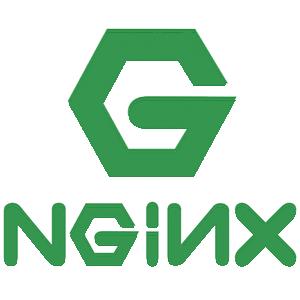 Nginx-Logo-02.png