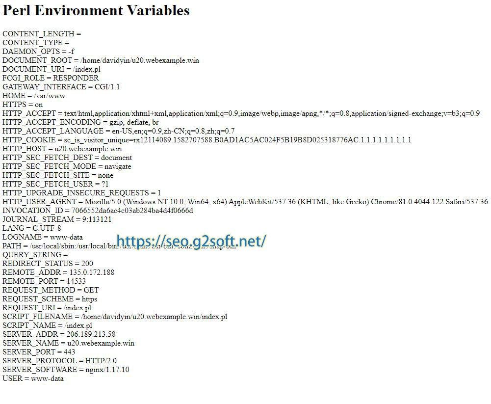 https://seo.g2soft.net/images/perl-testing-script.jpg
